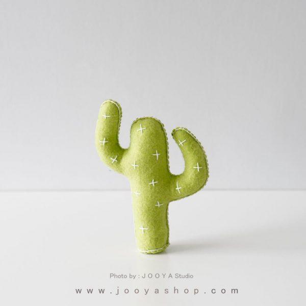 کاکتوس نمدی کوچک رنگ سبز فسفری