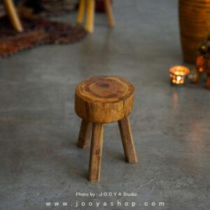 استند چوبی کوچک کاکتوس
