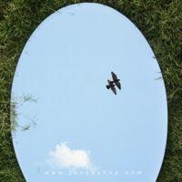 آینه برتر و جذاب و ۶ مدل دیواری که برای زیباسازی خانه شما لازم است