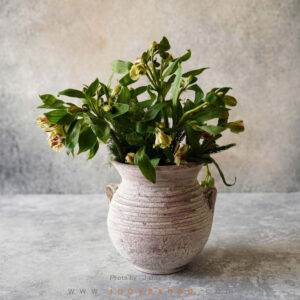 گلدان سفالی حلما